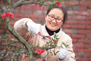 Residential Landscape Technician Diploma | Burnaby Community ...