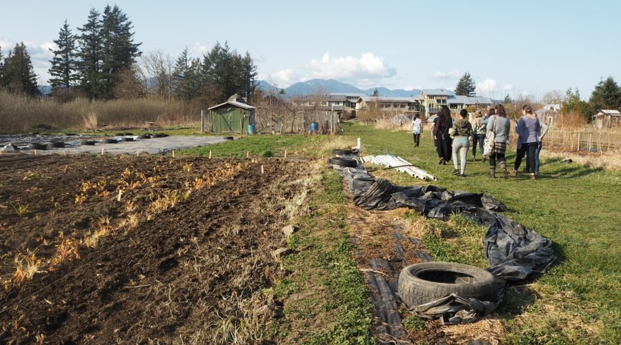 permaculture-05