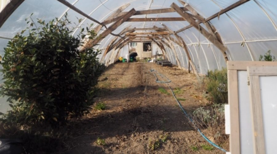 permaculture-08