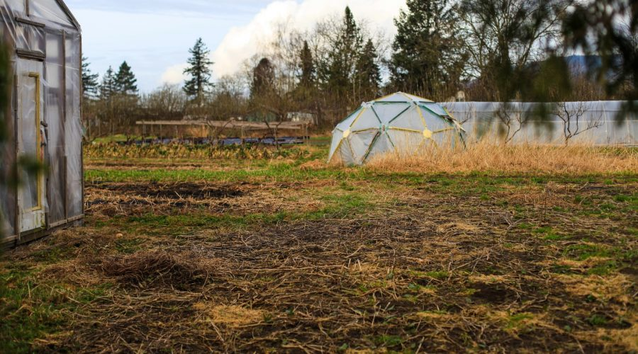 permaculture-56-yarrow-ecovillage